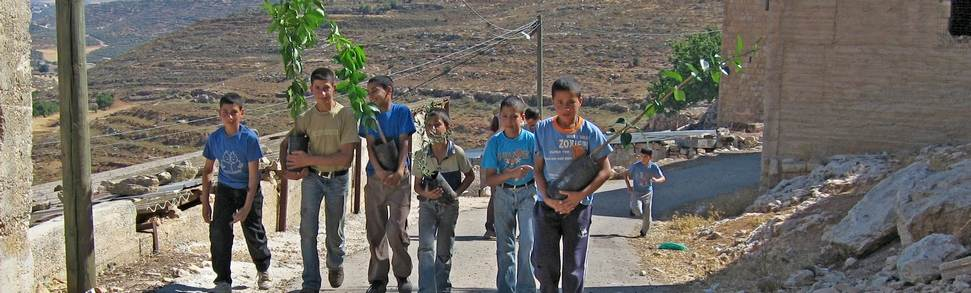 Boys carrying olive trees in Yanoun village