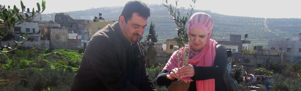 Man and Woman holding a FONSA olive tree ready for planting